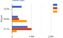 Statistik Penumpang Kapal Pelni di Pelabuhan Labuan Bajo