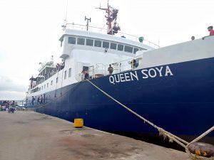 KM Queen Soya